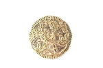 Ancient Nephews Coin